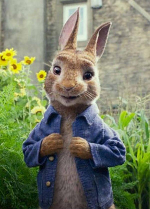 James Corden Peter Rabbit Jacket
