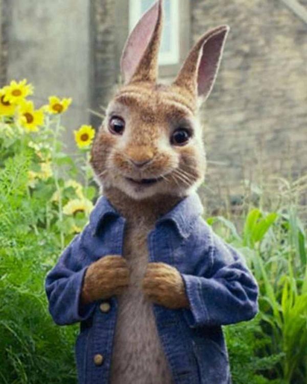 James Corden Peter Rabbit Blue Denim Jacket